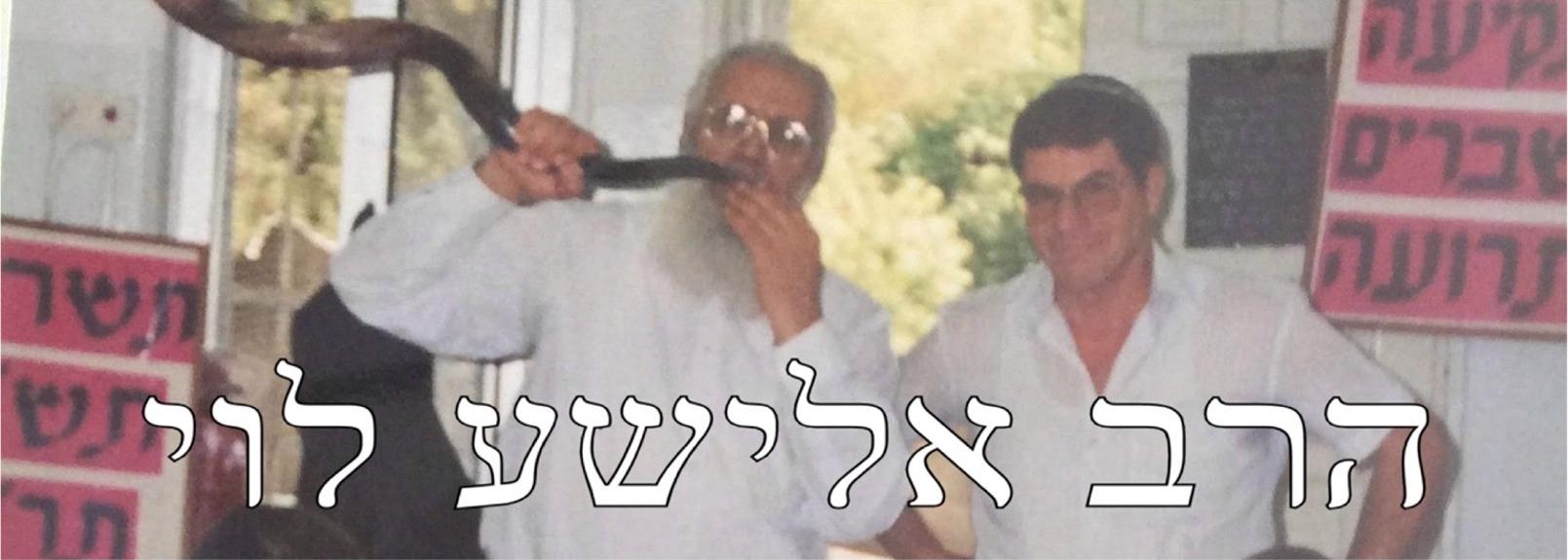 הרב אלישע לוי